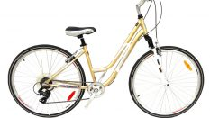 Geotech infinity 28 Woman City/Tour Bike