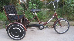 Geotech Taxi 20 Jant Tricycle Bike