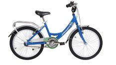 Geotech Path 20 Rim Kid Bike