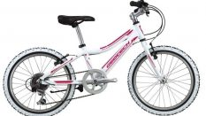 Geotech Path XC 20R Kid Bike 20th Year Special