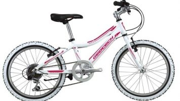 Geotech Path XC 20R Kid Bike 20th Year Special