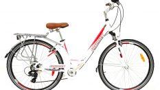 Geotech infinity Horizon 3 28 Woman Şehir/Tur Bisikleti